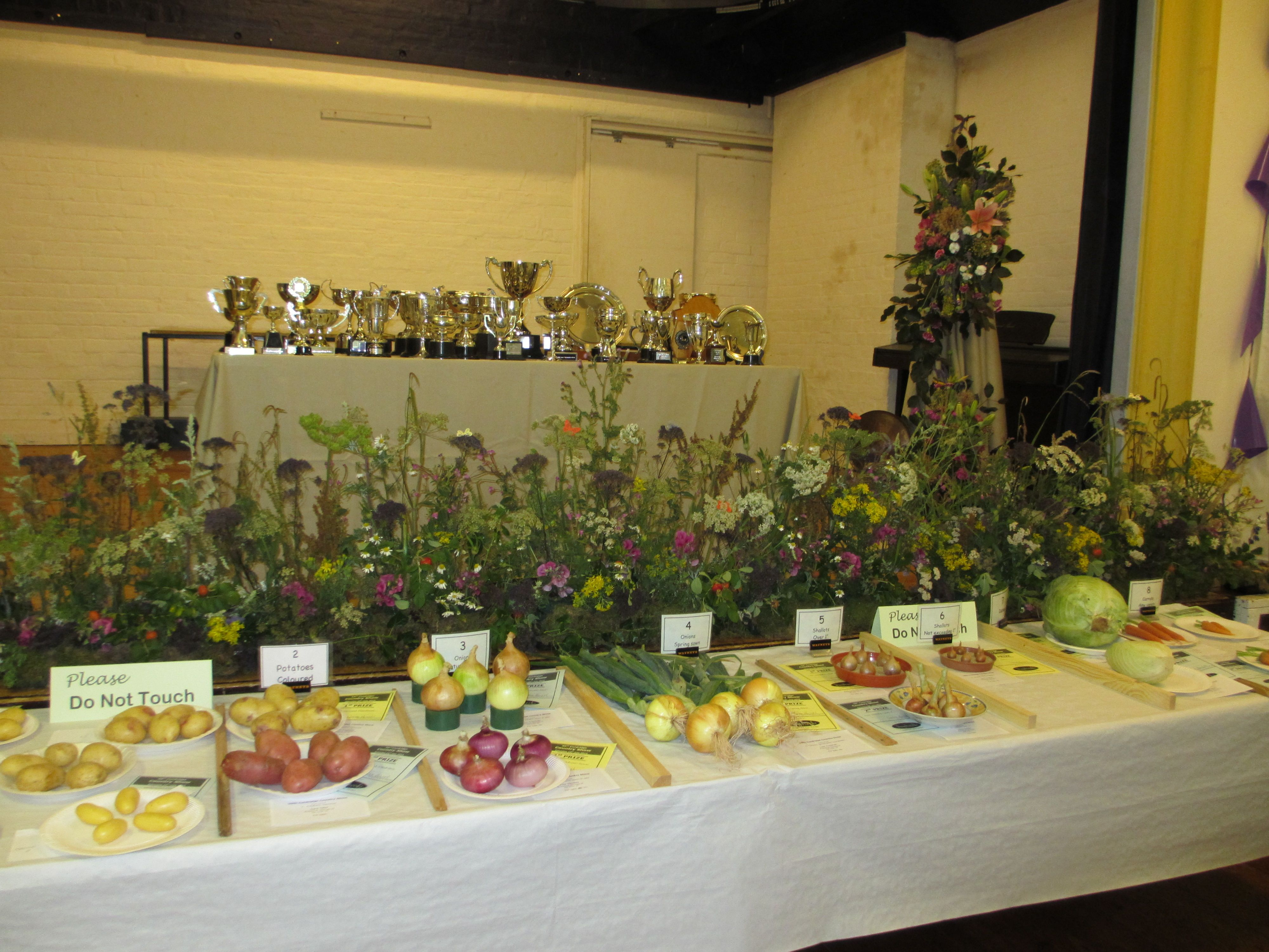 vegetable classes with Flower display and trophies behind